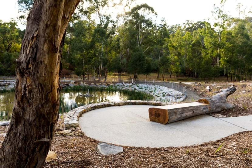 Australian Ecosystems - Mullum Creek, Donvale Project