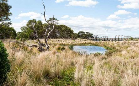 Landscape of the Year - Australian Ecosystems